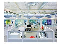 The Googleplex